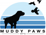 Muddy Paws Wirehaired Pointing Griffons
